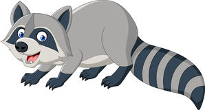 Cartoon funny raccoon isolated on white background Royalty Free Stock Image