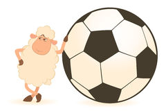 Cartoon funny sheep play in football Stock Images