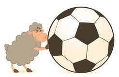 Cartoon funny sheep play in football Royalty Free Stock Images