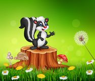Cartoon funny skunk on tree stump in summer background Royalty Free Stock Images