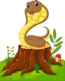 Cartoon funny snake Royalty Free Stock Photography