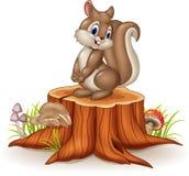 Cartoon funny squirrel on tree stump Royalty Free Stock Photos