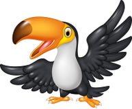 Cartoon funny toucan  on white background Royalty Free Stock Photo