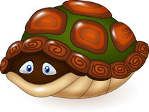 Cartoon funny turtle hides in its shell Stock Photos