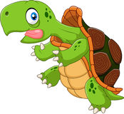 Cartoon funny turtle running Stock Images