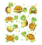 Cartoon funny turtle, set for label design. olorful character vector Illustration Royalty Free Stock Image