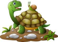 Cartoon funny turtle with snail Stock Photos