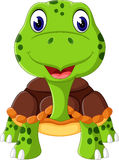 Cartoon funny turtle Royalty Free Stock Image