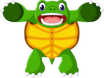 Cartoon funny turtle Stock Images