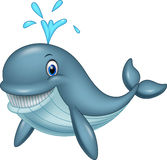 Cartoon funny whale. Illustration of Cartoon funny whale Royalty Free Stock Image