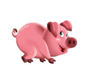 Cartoon funny young pig in action - isolated background Royalty Free Stock Photography