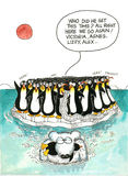 Cartoon gag of polar bear and penguins Stock Images