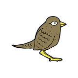 Cartoon garden bird Royalty Free Stock Image