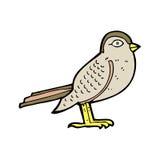 Cartoon garden bird Royalty Free Stock Images