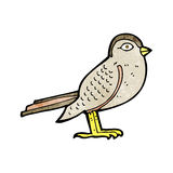 Cartoon garden bird Royalty Free Stock Photo