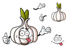 Cartoon garlic vegetable with green sprouts. Cartoon head of garlic vegetable character with green sprouts and funny grimace face suited for food pack or healthy Royalty Free Stock Photography