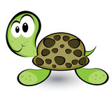 Cartoon gay turtle Royalty Free Stock Images