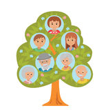 Cartoon generation family tree in flat style grandparents parents and child isolated on white background. Stock Photography