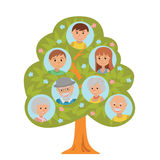 Cartoon generation family tree in flat style grandparents parents and child  on white background. Royalty Free Stock Image