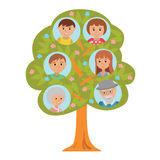 Cartoon generation family tree grandparents parents and children  on white background. Cartoon generation family tree illustaration  on white background. Family Royalty Free Stock Images
