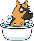 Cartoon German Shepherd Bath Stock Images