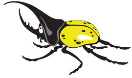 Cartoon giant hercules beetle Royalty Free Stock Images