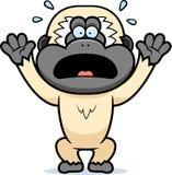 Cartoon Gibbon Panicking. A cartoon illustration of a gibbon panicking Royalty Free Stock Photo