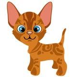 Cartoon ginger kitten with blue eyes, vector pets stock illustration