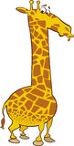 Cartoon Giraffe Stock Photos