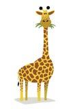 Cartoon giraffe. A cute, tall cartoon giraffe eating grass Royalty Free Stock Images