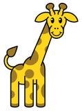 Cartoon Giraffe Animal Stock Images