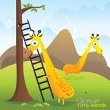 Cartoon giraffe illustration  Stock Photos