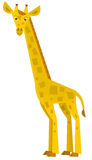 Cartoon giraffe - illustration for the children Royalty Free Stock Image