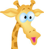 Cartoon giraffe Royalty Free Stock Image