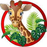 Cartoon giraffe mascot Royalty Free Stock Images