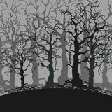 Cartoon gloomy forest background of trees without leaves vector illustration