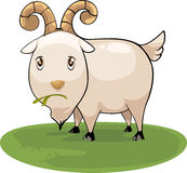 Cartoon goat vector Royalty Free Stock Image