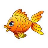 Cartoon gold fish isolated vector illustration. Cartoon gold fish isolated on white vector illustration Stock Photos