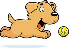 Cartoon Golden Retriever Chasing Ball Royalty Free Stock Photography