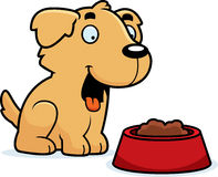 Cartoon Golden Retriever Food Stock Photography