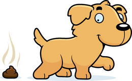Cartoon Golden Retriever Poop Royalty Free Stock Photography