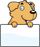 Cartoon Golden Retriever Sign. A cartoon illustration of a Golden Retriever with a sign Royalty Free Stock Photography