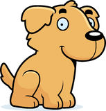 Cartoon Golden Retriever Sitting Royalty Free Stock Photography