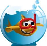 Cartoon goldfish. Funny cartoon goldfish in aquarium Stock Images