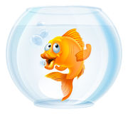 Cartoon goldfish in bowl. An illustration of a cute cartoon goldfish in a gold fish bowl Stock Photography