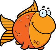 Cartoon Goldfish Smiling Stock Photography