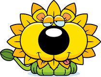 Cartoon Goofy Dandelion Lion Stock Photos