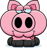 Cartoon Goofy Pig Royalty Free Stock Images