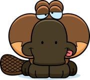Cartoon Goofy Platypus Stock Photos
