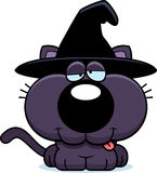 Cartoon Goofy Witch Cat Royalty Free Stock Photos